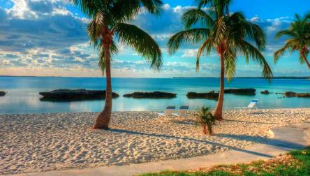 All Inclusive Day Pass Riu Palace Paradise Island Paradise Island